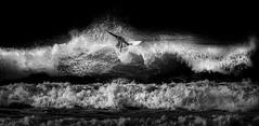 Crest of a Wave (Mick Blakey) Tags: shoreline resort sand cornish wetsuit active action surf surfing coastsurf contrast adrenaline sea blackwhite coastline coast beach waves monochrome newquay fisralbeach coastal surfers roughsea seascape surfboard cornwall attitude cool