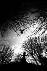 (21/21) Project ''Lviv overhead'' (nerapavlo) Tags: filmisnotdead lvivoverhead lviv плівка city lwow lemberg чб lvov чбфото leopolis ukraine львів україна bnw monochrom noir film filmphotography analog analogphotography 35mm 35mmfilm kodak project monochrome analogue kodakfilm urban bw sky lines