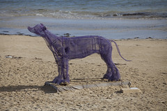 Dog on the Beach (Big) (Craig Wilson Photography) Tags: life old sculpture dog art beach living big heart artistic recycled may hound lifestyle podium lives approved win awards creature relaxed fact castaways rockingham 2013