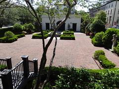 Harper Fowlkes rear garden Savannah