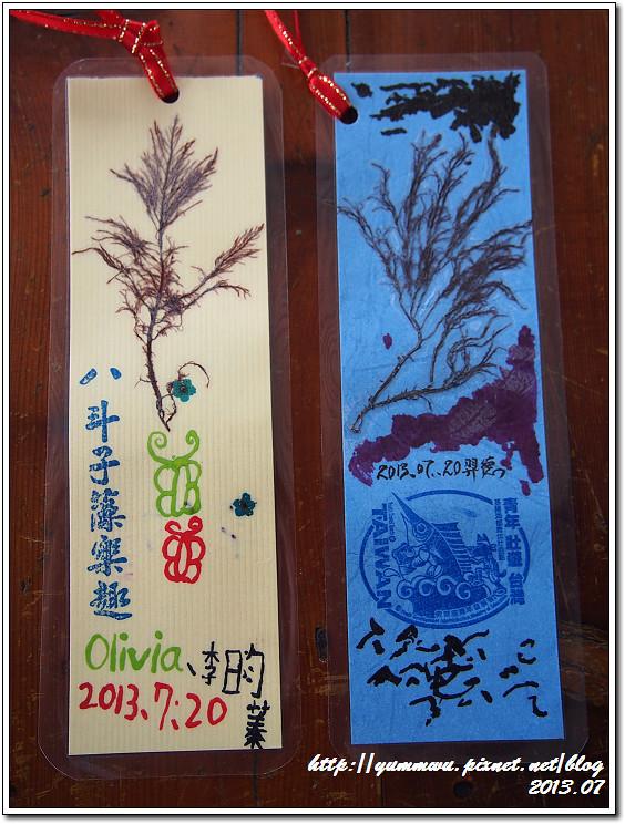八斗子藻樂趣(99)