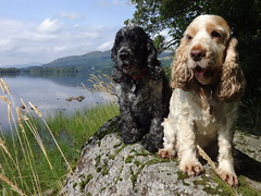 Isla and Rona at Lake of Menteith (cocopie) Tags: