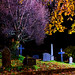 "Autumn Graveyard • <a style=""font-size:0.8em;"" href=""http://www.flickr.com/photos/67868563@N06/10176499386/"" target=""_blank"">View on Flickr</a>"