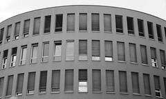 Blick nach oben  [  ] (sunnybille) Tags: windows bw architecture fenster streetphotography architektur sw potsdam blicknachoben 2013 canonanalog strasenfotografie strasenansicht