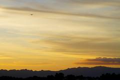 Plane at sunset, Tauranga (Elyse Childs Photography) Tags: sunset newzealand plane aeroplane northisland tauranga kaimais elysechildsphotography