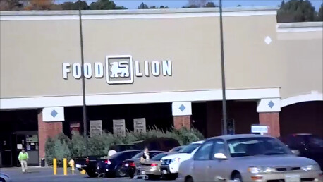 FOOD LION FRUITLAND, MD