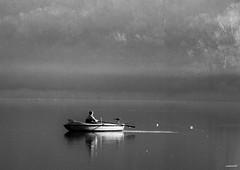 Lago d'Alserio (Como) (memo52foto) Tags: italien winter italy lake como lago fisherman europa europe barca italia hiver eu lac invierno pecheur inverno pesca brianza lombardia niebla italie fischer pes