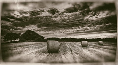 Autumn harvest (FlickR Explore 23/01/2014) (S.R.Murphy) Tags: sunset england cloud monochrome sepia clouds landscape mono evening unitedkingdom yorkshire fields wetplate haybales barnsley antiqueplate canon1740mm highhoyland canon6d sept2013 nikanalogefexpro