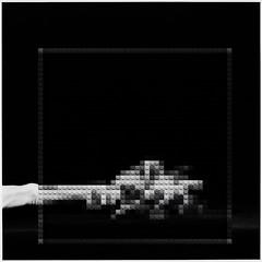reach (William Keckler) Tags: orchid hand lego mapplethorpe reach 1983
