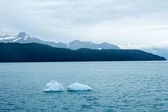 _MG_4549a (markbyzewski) Tags: alaska ugly glacierbaynationalpark