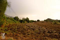 أرض (عيسى النخيفي) Tags: تصوير طبيعة ارض خضرة مناضر