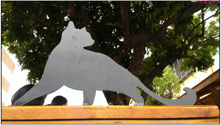 雲林虎尾屋頂上的貓 (38).jpg