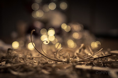 carpenter (pipflickr) Tags: wood bokeh blade shavings