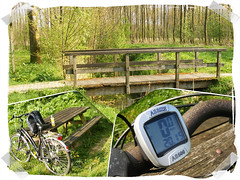 Spring: bicycle time:-) (H. Bos) Tags: cycling spring woods natuur bos lente fietsen fiets almere bycicle naturen cirkelbos