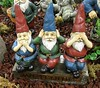 Garden Gnomes (JamesHou0411) Tags: buddha gardengnome gardenstatuary