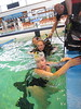 PSP 2014 Aquanature samedi_31