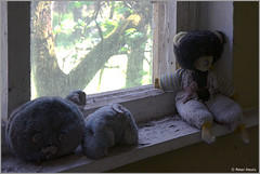 Kindergarten in Kopachi (Peter Heuts) Tags: plant photography fotografie power 26 sony nuclear ukraine peter 99 disaster april alpha 1986 chernobyl  reactor4 tsjernobyl a99 oekrane kernramp  heuts peterheuts