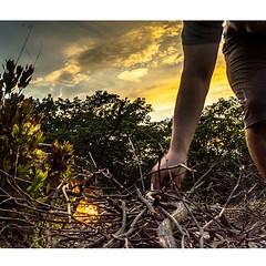 retropman keeping some light alive by... (thatbenhaller) Tags: camping sunset newyork fire bearmountain harriman tbt vsco latergram uploaded:by=flickstagram rsanature retropman instagram:photo=792005146680690100571993008