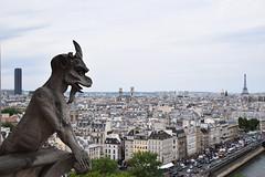 Gargouille (HBA_JIJO) Tags: paris france sculpture panorama gargouille seine demon panoramique toureiffel eiffeltower tour notredame hbajijo street rue ville statue monument