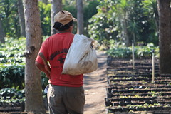 Tercer Taller Regional BIOFIN para Latinoamérica y el Caribe (PNUD Guatemala) Tags: biodiversida pnud guatemala latinomerica biofin