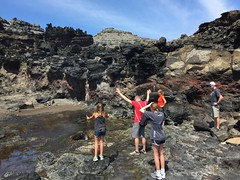 nakele blowhole (d_rimbo) Tags: family vacation trip travel maui hawaii springbreak rimbo island blowhole northernmaui nature ocean