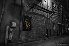 Ann Arbor Alley (mrdonduck) Tags: liberty spring downtown michigan detroit arts dia institute arbor ann 2013