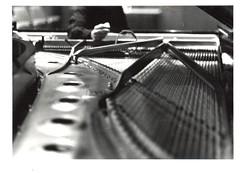 03 (ssherma1) Tags: blackandwhite bw music film 35mm piano strings tuning binghamton binghamtonuniversity