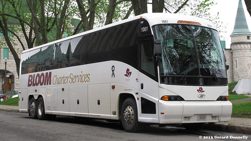 Bloom Charter Services 1061