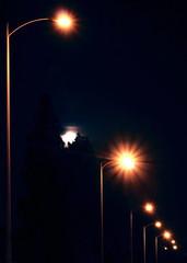 Streetlight Supermoon (ChristinaPhelps808) Tags: longexposure trees light sky moon streetlight streetlamp astrophotography astronomy nightsky lunar waning supermoon