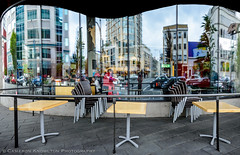 In a Pig's Eye (Cameron Knowlton) Tags: windows reflection window architecture reflections restaurant pig nikon architectural potd d600