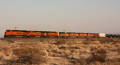 Another Great Lash-Up. But.... (darkprince66 (Tug Chasing Super Hero :D)) Tags: california railroad santafe train americana bnsf mojavedesert burlingtonnorthernsantaferailroad americantrains usrailroads