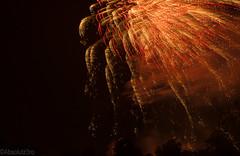 IMG_1220 (Poromshunno) Tags: longexposure fireworks 4th independenceday libertyfest