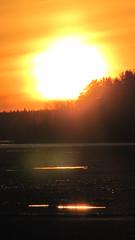 incandescence (le d u m) Tags: light sunset summer sun sunlight lake ice nature water sunshine set sunrise landscape evening spring shine nuclear sunny clear rise  blasting incandescence             suulajrviilola ovsyanoye