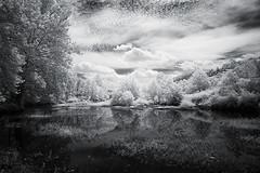 Cheat River Inlet (IR) (DRCPhoto) Tags: canon lens westvirginia l 5d 1740mm cheatriver digitalinfrared irconverteddslr