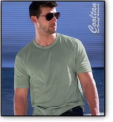 2254 (CoolTan Sportswear) Tags: summer henley sportswear golfshirt cooltan tanthru tanthrough nomoretanlines