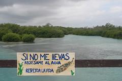 Respeto ! (Sergio Tohtli) Tags: beach mar peces playa reserva respeto impactoambiental residuos incongruencia environmentalimpact inconciencia siankaan bisfera daocolateral mosaiconaturamxico