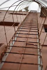 A brincar com o foco I (Letcia Toriani) Tags: sky lines linhas wall way illusion parede caminho iluso linha