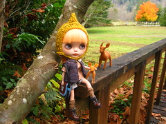 IMG_9883...Dove and her little friends take a break on the bridge after collecting autumn treasures today.