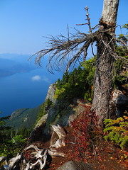 Fall Over Howe Sound (Dos Con Mambo) Tags: autumn red orange canada ski fall nature colors st spectacular fantastic bc view britishcolumbia peak bowl marks explore area howesound cypress horseshoebay denmanisland explorers viewpoint squamish ferries sunshinecoast hikes thelions vantagepoint atop lunchrocks explored stmarkspeak naturespoetry earthnaturelife ferryboatcrossing