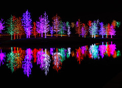 Vitruvian Park (Christopher Irwin) Tags: christmaslights addison vitruvianpark