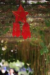 2010 New Years GoKart 016 (OhanaKEG) Tags: christmas star hawaii philippines sofa honolulu lantern parol pasko malasadas everlasting everlastingflower pundakit kalanianaole pinoychristmas philippineparol