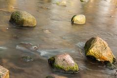 Oliwa (Stanisaw Malc) Tags: landscape photography nikon polska malc d300 stanislaw oliwa pomorze krajobraz