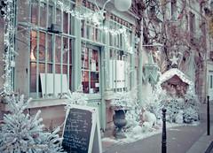 ile_de_la_cite-57 (Jardin Pamplemousse) Tags: paris by seine night de la cit saintmichel cite le le