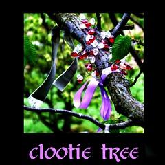 clootie tree: poem (tina negus) Tags: poetry poem yorkshire ppe clootietree langstrothdale ragtree