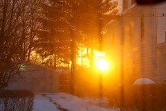 this morning's sunrise (peonyandbee) Tags: winter house home sunrise springiscoming goldenlight