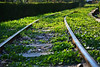 Railway Track (kamalalsanea) Tags: city track railway entertainment kuwait هلا q8 المدينه كويت فبراير الوطنيه الترفيهيه الاعياد