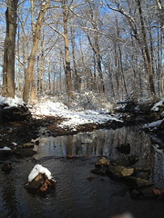 "Broomall's Run • <a style=""font-size:0.8em;"" href=""http://www.flickr.com/photos/92887964@N02/12599938314/"" target=""_blank"">View on Flickr</a>"