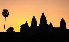 Dawn at Angkor Wat (Jim Boud) Tags: morning travel flowers blue orange lake reflection silhouette yellow architecture clouds sunrise canon landscape temple dawn pond ruins asia cambodia smooth wideangle angkorwat palmtrees dslr siemreap angkor hindu hindutemple artisticphotography asiapacific 2013 60d jimboud canoneos60d eos60d jamesboud