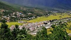 Paro Valley (Bhutan) (flowerikka) Tags: mountain bhutan kingdom valley paro himalaya