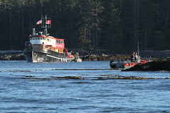 30804152 (QCL Shooter) Tags: fishing bc britishcolumbia review driftwood salmonfishing sportfishing qcl fishinglodge haidagwaii queencharlottelodge